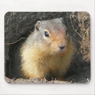BC Ground Squirrel Mousepad