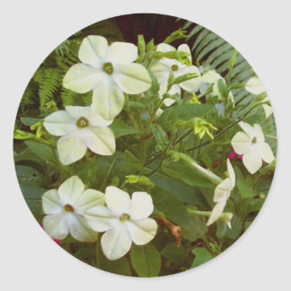 BC summergardens 1 Round Sticker