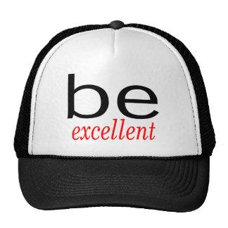 Be Excellent Cap