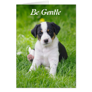 Be Gentle - Greeting Card