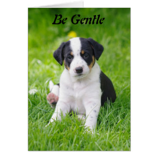 Be Gentle Greeting Card