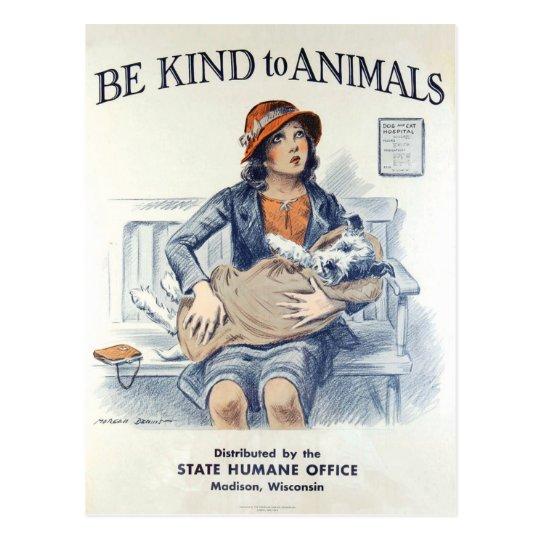 Be Kind to Animals USA vintage postcard