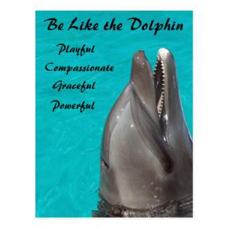 Be Like the Dolphin Postcard