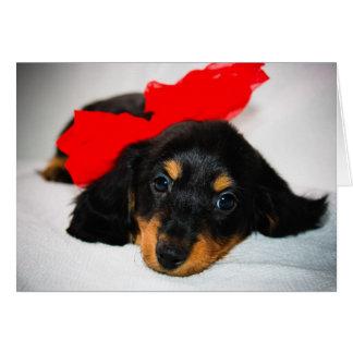 Be Mine-Dachshund puppy valentine s day card