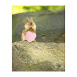 Be Mine Little Chipmunk Stretched Canvas Print