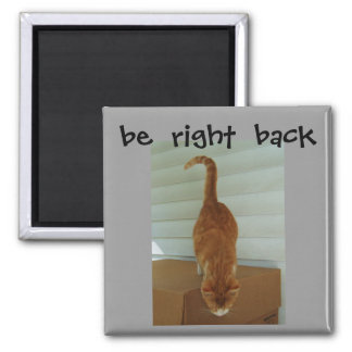 be  right  back magnet, stray1 square magnet