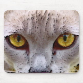 Be scared, be very scared mouse pad