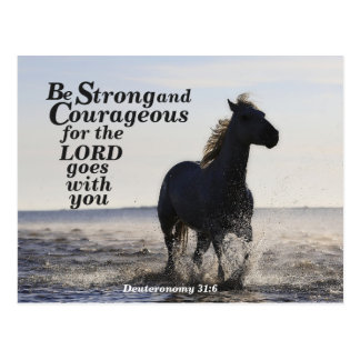 Be Strong and Courageous Bible Verse Deut 31 Horse Postcard
