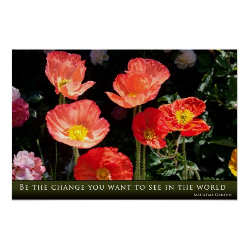 Be the Change You Want to See in the World: Gandhi Poster