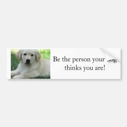 Be the person your dog thinks you are bumper sticker