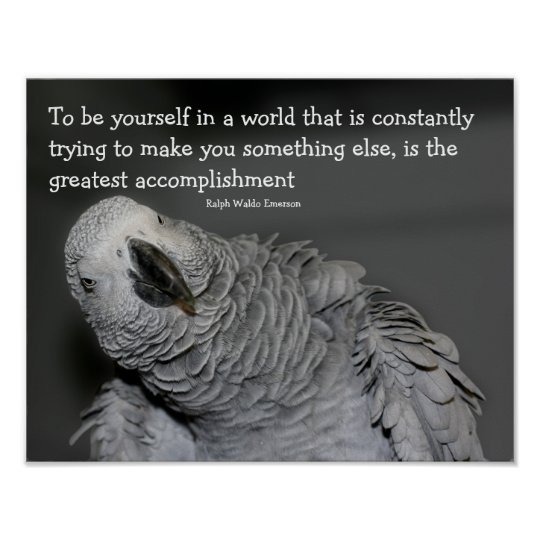 Be Yourself Quote Cute Parrot Inspirational Poster