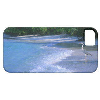Beach 2 case for the iPhone 5