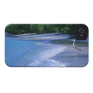 Beach 2 iPhone 4 covers