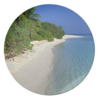 Beach 4 plate