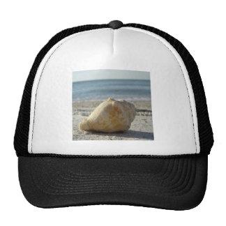 Beach A Clear Water Shell Mesh Hat