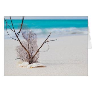 beach-and-sea-concept beach beauty blue caribbean card