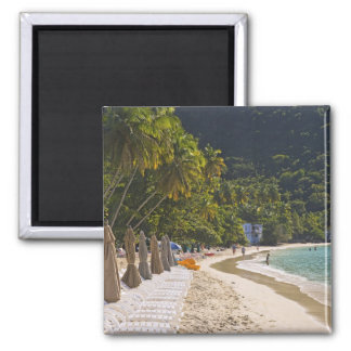 Beach at Cane Garden Bay, Island of Tortola Magnet