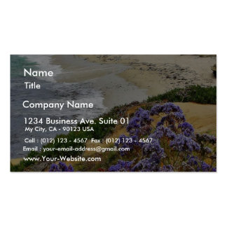 Beach At La Jolla Cove Pack Of Standard Business Cards
