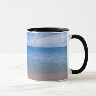 Beach at low tide mug