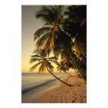 Beach at sunset, Trinidad Photo Print