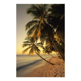 Beach at sunset Trinidad Photograph
