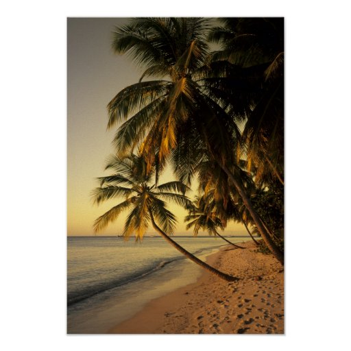 Beach at sunset, Trinidad Poster