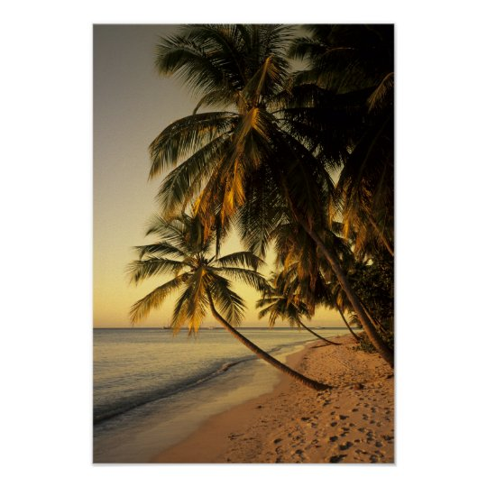 Beach at sunset, Trinidad Poster