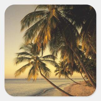 Beach at sunset, Trinidad Square Sticker