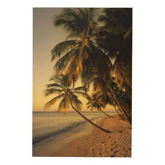 Beach at sunset, Trinidad Wood Wall Art
