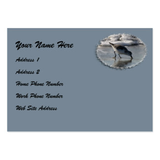 Beach Bird 1 Profile Card Pack Of Chubby Business Cards