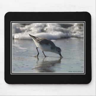 Beach Birds _ 1 Mouse Pad