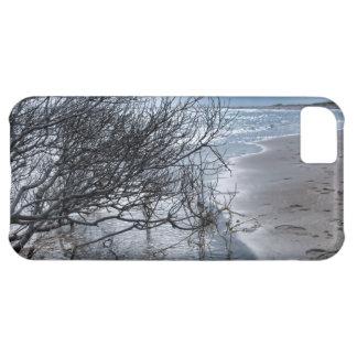 Beach Branch iphone 5 Case
