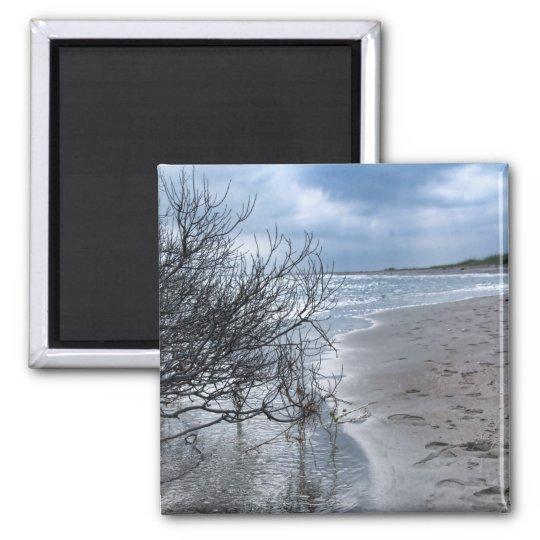 Beach Branch Square Magnet