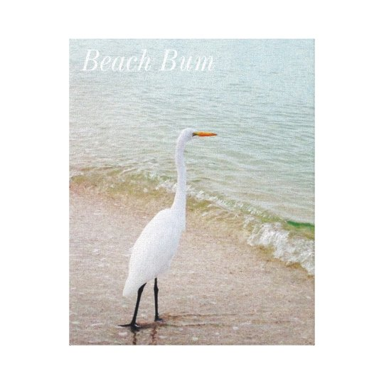 Beach Bum Bird Canvas