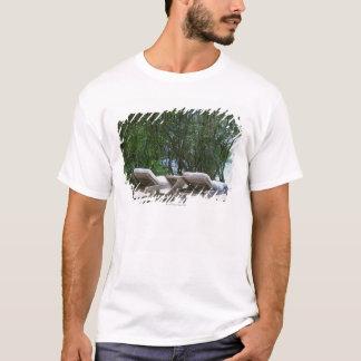 Beach Chair 5 T-Shirt