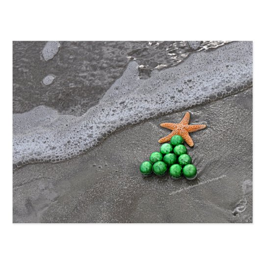 Beach Chic Christmas Postcard