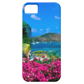 Beach French Cul De Sac Saint Martin iPhone 5 Case