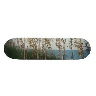 Beach Grass and Ocean at Dusk Skate Boards