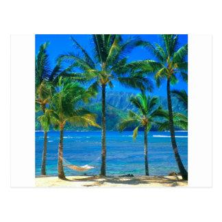 Beach Hammock Kauai Hawaii Postcard
