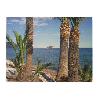 Beach in the Albir, Altea, Alicante, Spain Wood Print