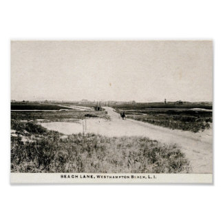 Beach Lane, Westhampton, New York, Vintage Poster