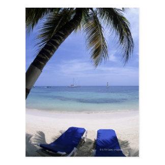 Beach, Lounge Chair, Palm tree, Horizon Over Postcard