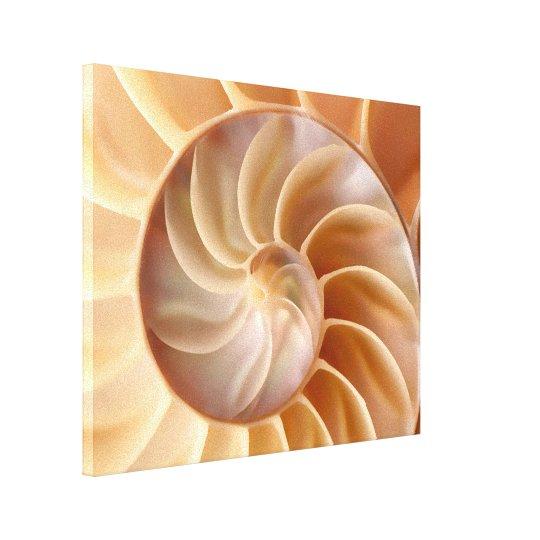 Beach Nautilus Shell Art Canvas Print