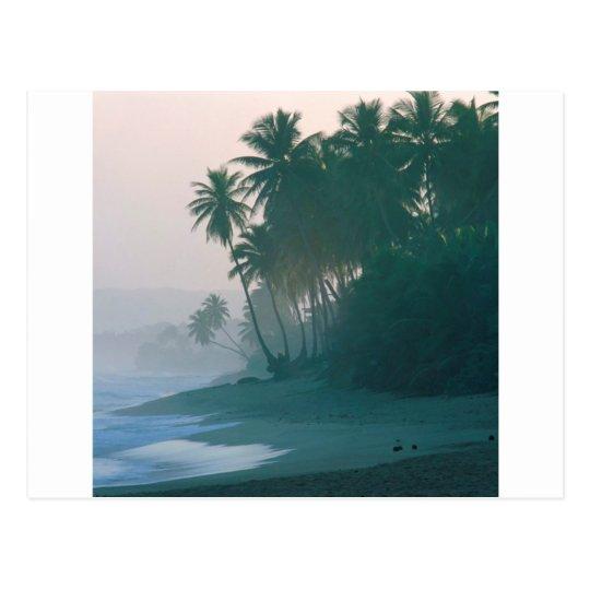 Beach New Light Misty Morn Puerto Rico Postcard
