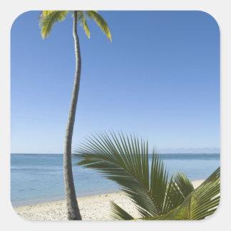 Beach on mainland Aitutaki, Cook Islands Square Sticker