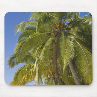 Beach on One Foot island, Aitutaki, Cook Islands Mouse Mat
