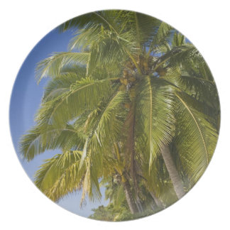 Beach on One Foot island, Aitutaki, Cook Islands Plate