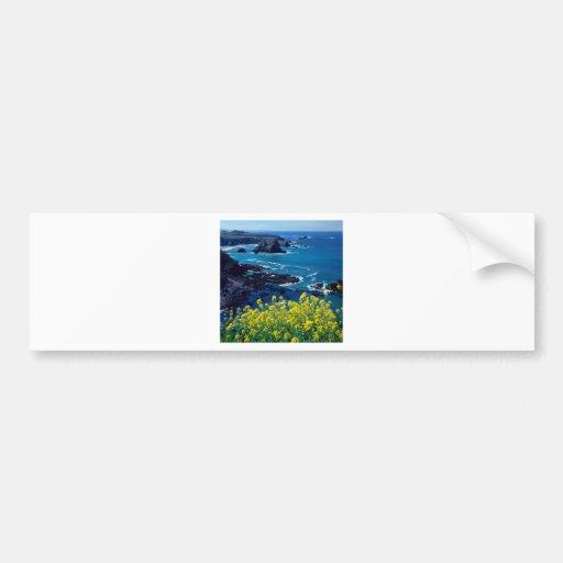 Beach Pacific Coastline Wildflowers Mendocino Bumper Sticker