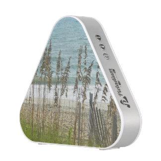 Beach Palm Combo Speaker