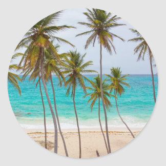 Beach Palms Round Stickers